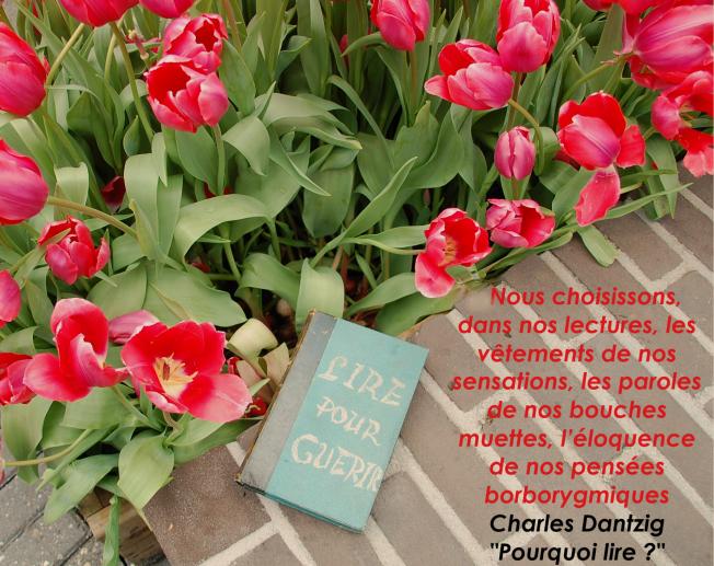 Charles Danzig - Pourquoi lire ?