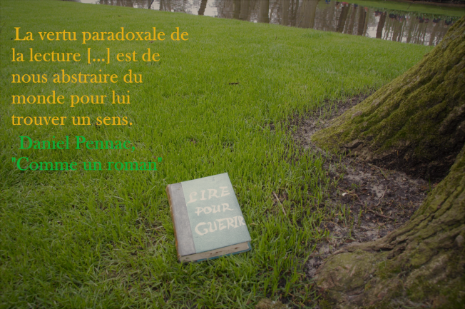 "Daniel Pennac ""Comme un roman"""