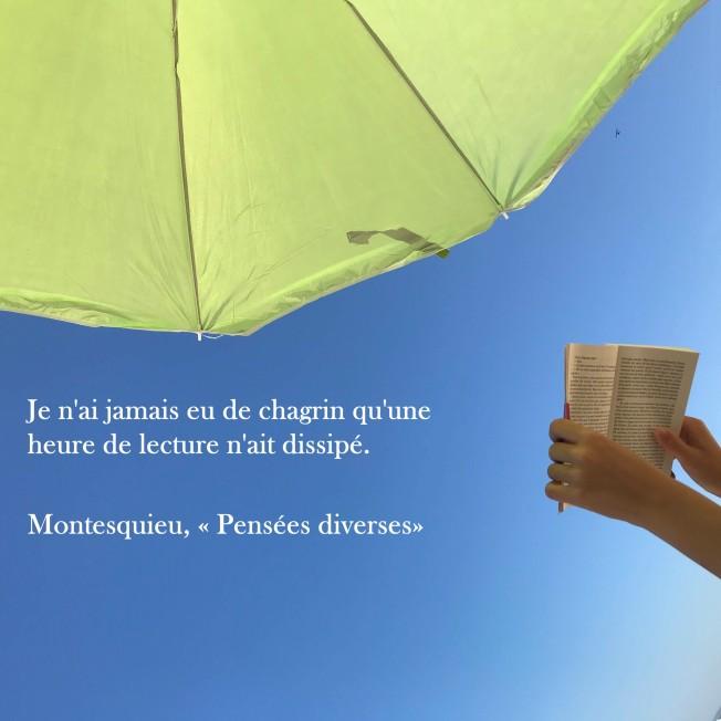 """Montesquieu """"Pensées diverses"""""""